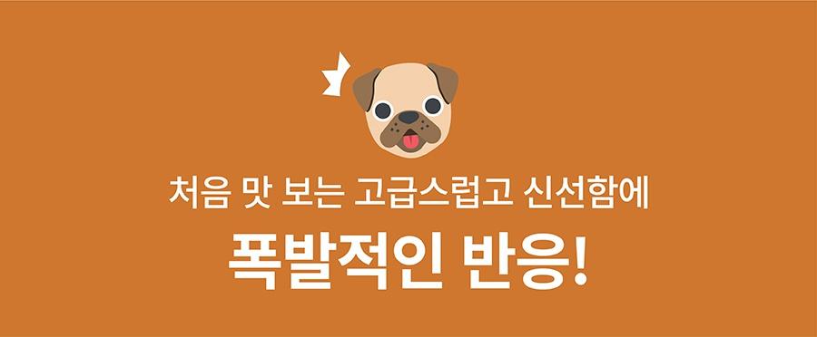 [EVENT] 츄잇 플레인-상품이미지-5